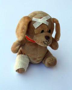 teddy-242838_640 - Copy
