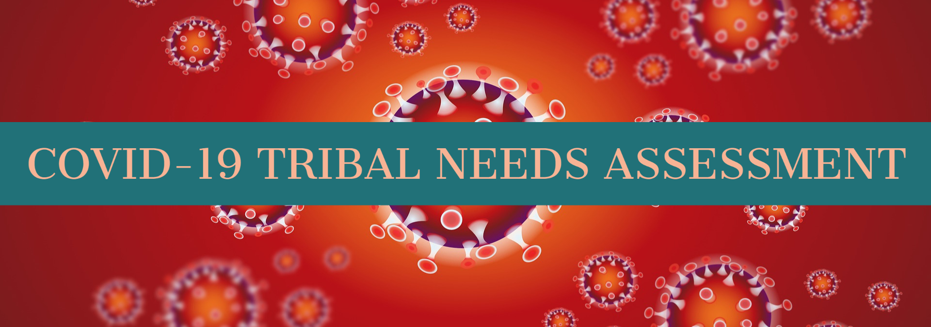 Take our COVID-19 Tribal Needs Assessment